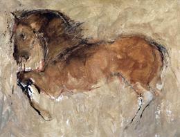 cavalli-c-romiti