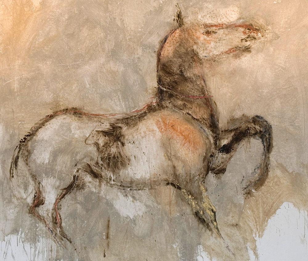 cavallo_07