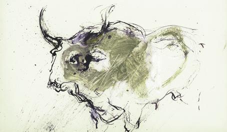 Toro maremmano