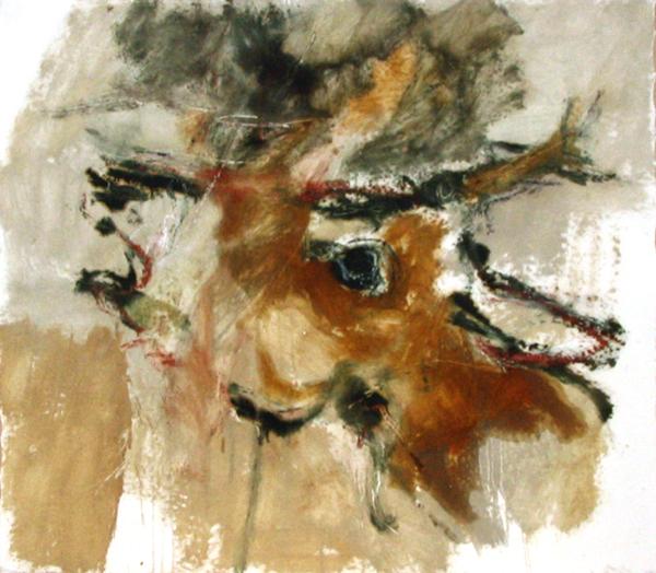 cervo-2
