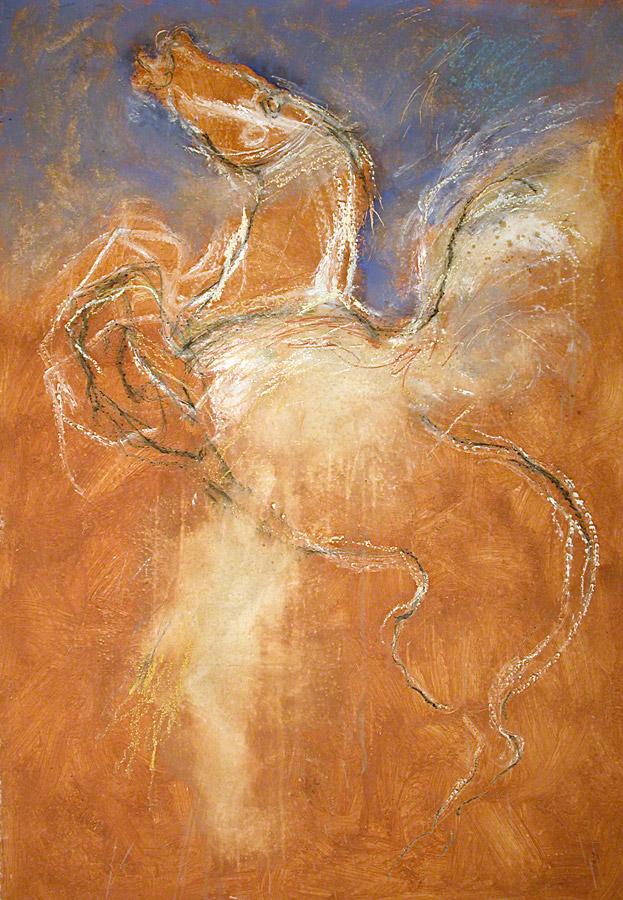 romiti-cavalli-33