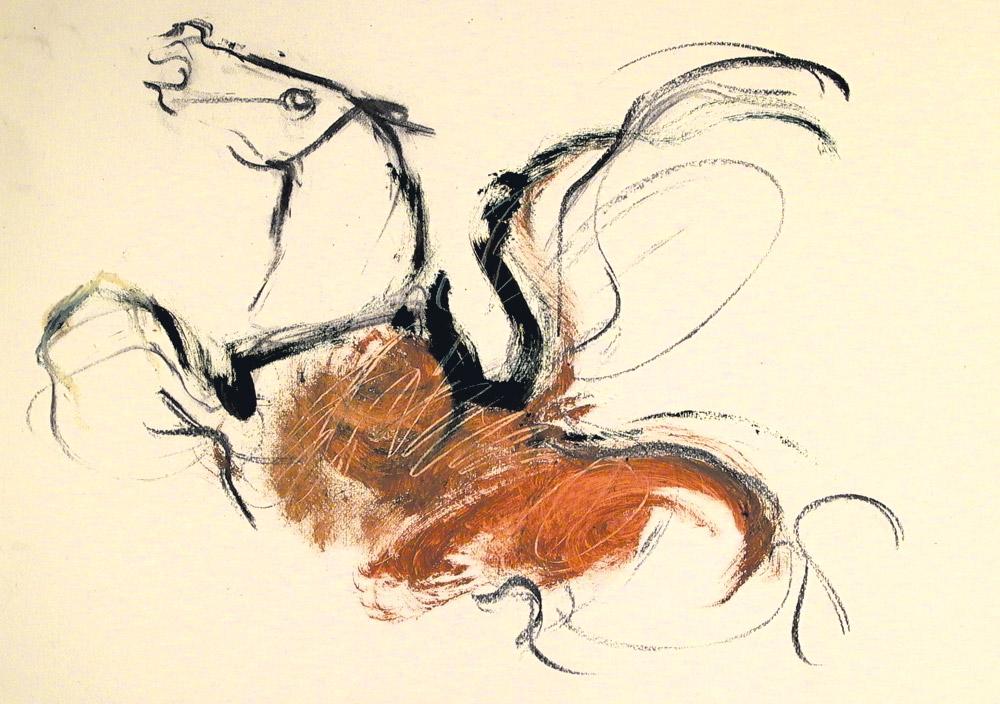 romiti-cavalli-39
