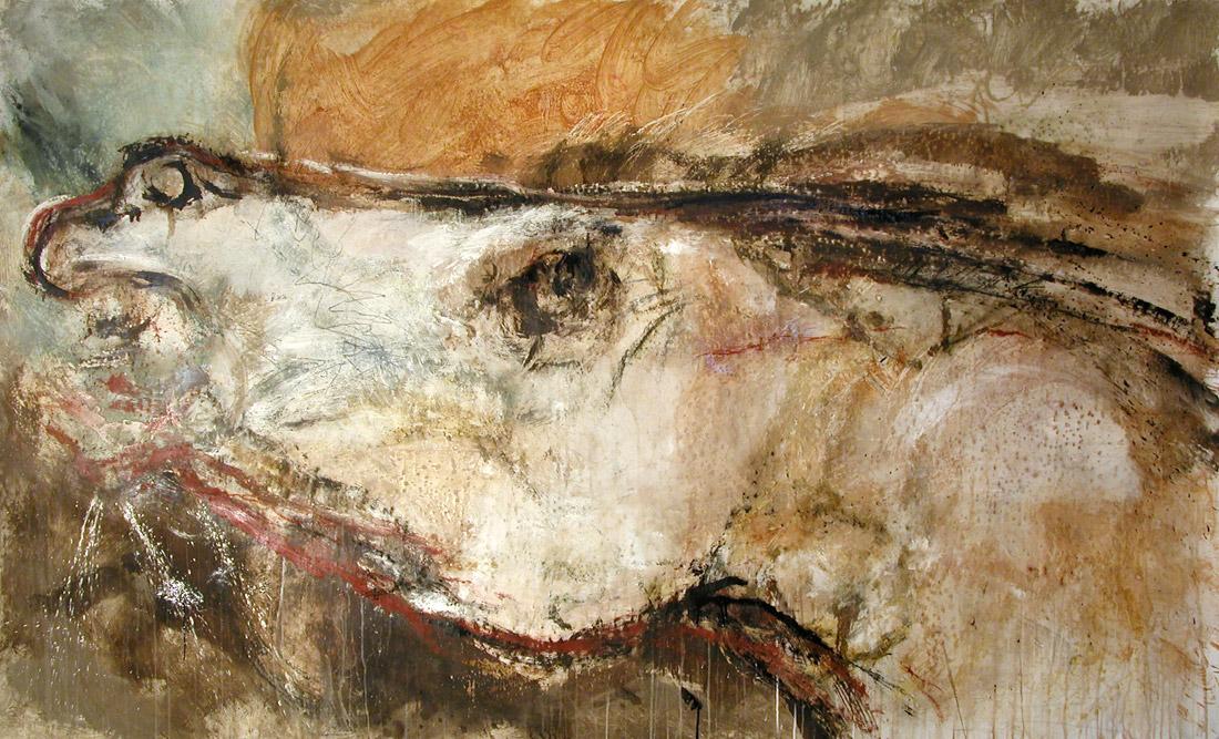 romiti-cavalli-5